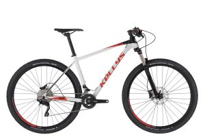 "MTB-XC 29"" bicykle"